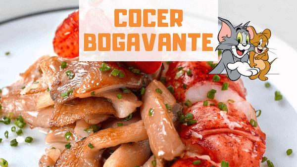 Cómo Cocer Bogavante Y Tiempo de Cocción