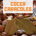 Cómo Cocer Caracoles y tiempo de Cocción Perfecto